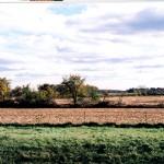 """Farm Land in Paducah Kentucky"""