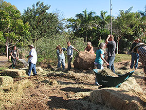 Building the Layer Cake Garden