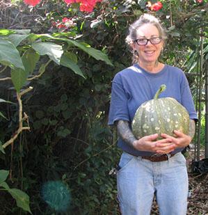 17 and a half pound Seminole Pumpkin